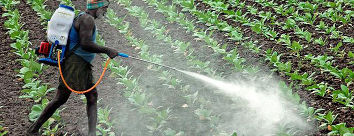 Organic Insecticides Spray